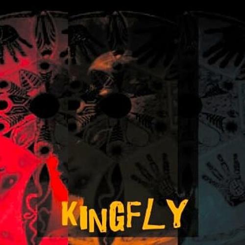 kingFly's avatar