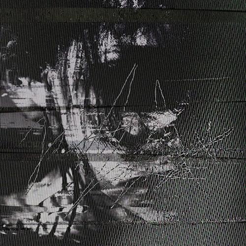 trag.ic,'s avatar