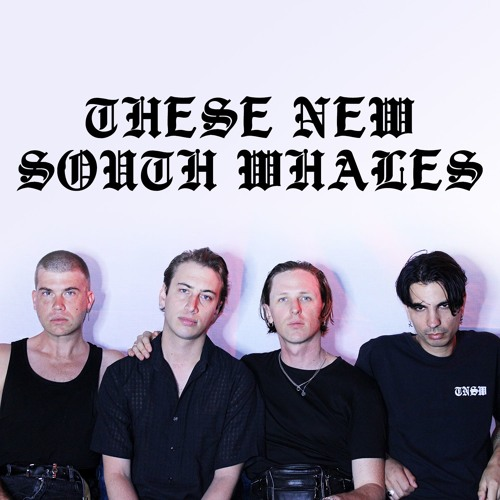 THESE NEW SOUTH WHALES's avatar