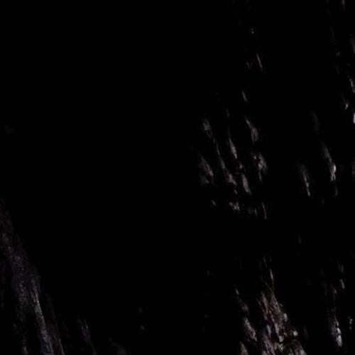 Misael's avatar