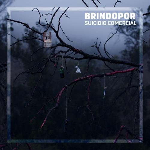 Brindopor's avatar