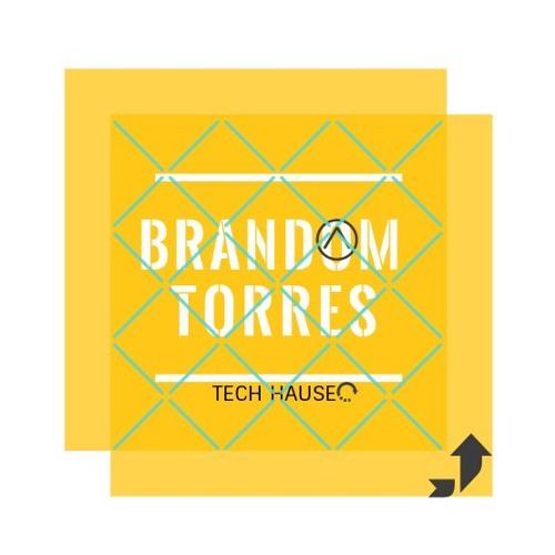 Brandom Torres's avatar