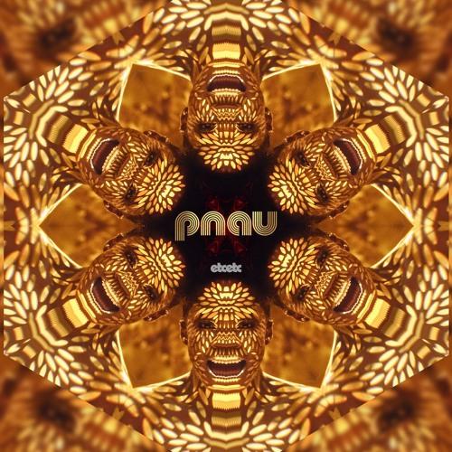 PNAU's avatar
