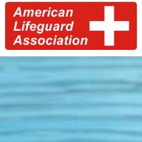 American Lifeguard Association's avatar