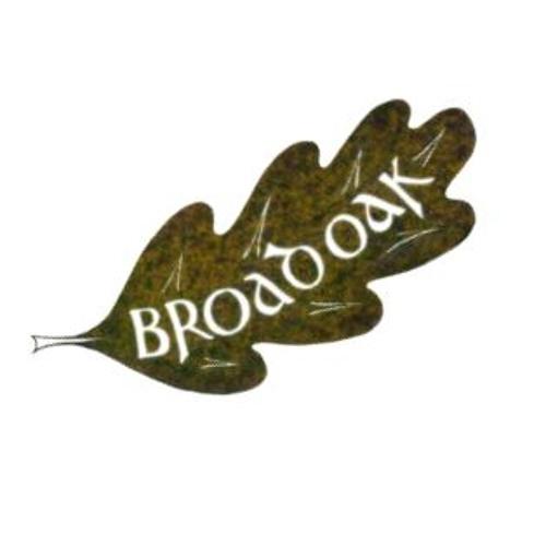 Broadoak's avatar