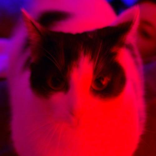 Polof's avatar