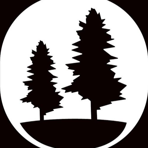 Pioneer Newsroom's avatar