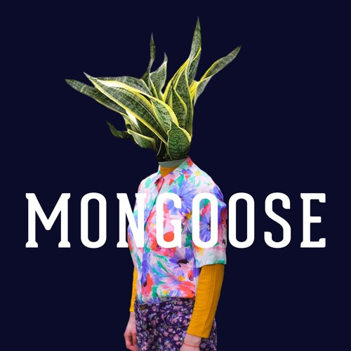 MongooseTunes's avatar