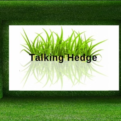 The Talking Hedge's avatar