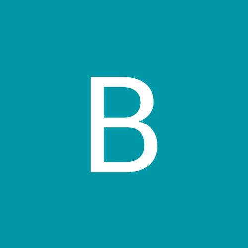 Bor Vil's avatar