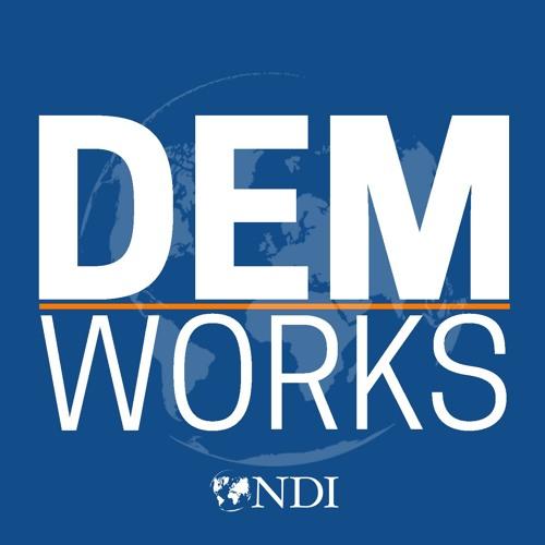 National Democratic Institute's avatar