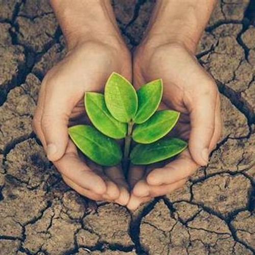 Save The Nature🌿's avatar
