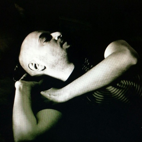 onasander's avatar