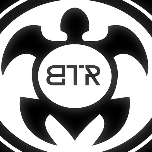 Black Turtle Records's avatar