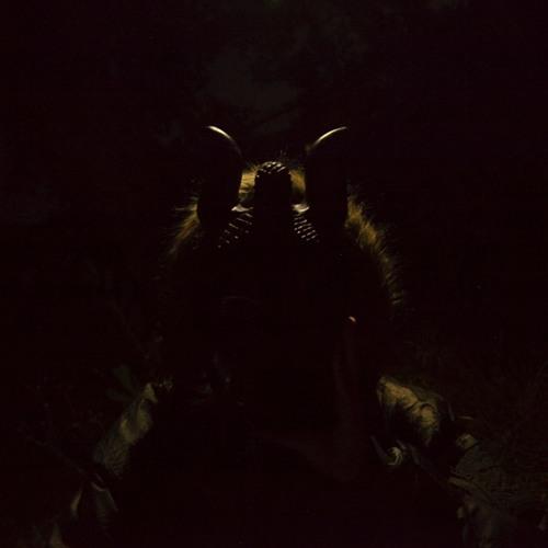no puls's avatar