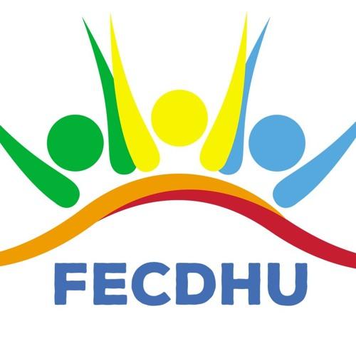 Fundación Fecdhu's avatar