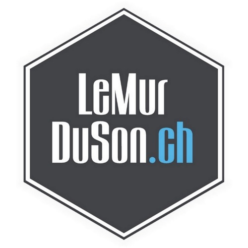 LeMurDuSonCH's avatar