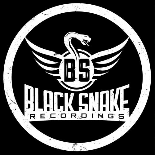 Black Snake Recordings's avatar