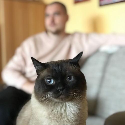 Roohu's avatar
