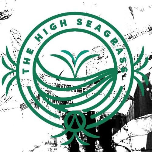 The High Seagrass's avatar