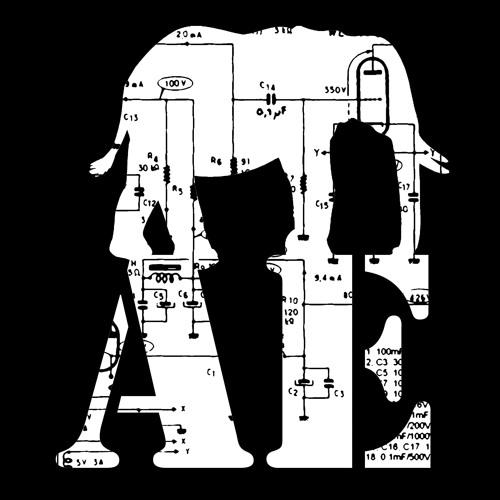 The Amplified Elephants's avatar
