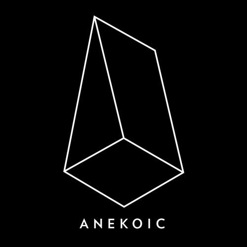 Anekoic Records's avatar