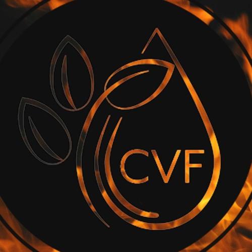 Centre de Vie de la Foi's avatar