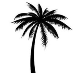 PALMTREES PRODUCTIONS