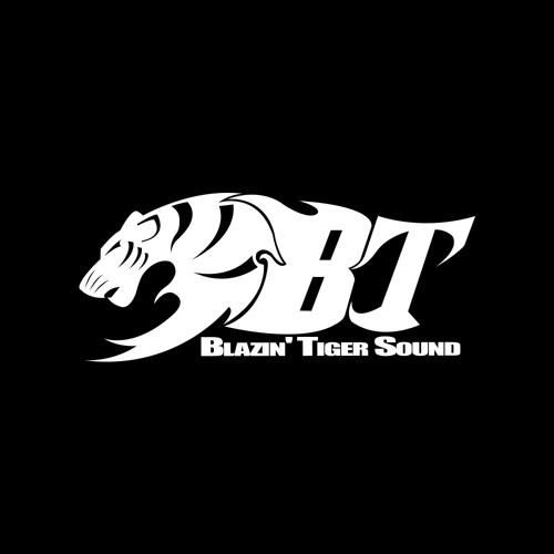 Blazin' Tiger Sound's avatar