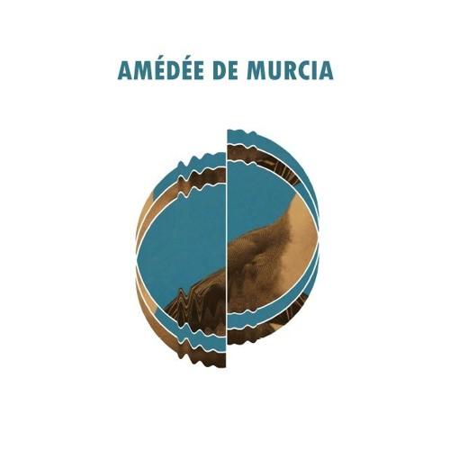 Amédée De Murcia's avatar