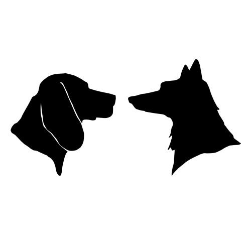 Fox & Hound Recordings's avatar