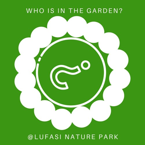 Who is in the Garden?'s avatar