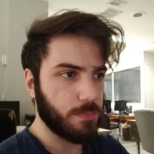 Vinicius Kleinsorgen's avatar