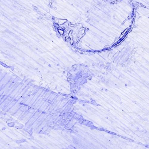 Moon Under Water's avatar