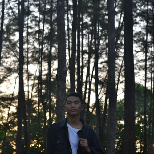 R AV's avatar