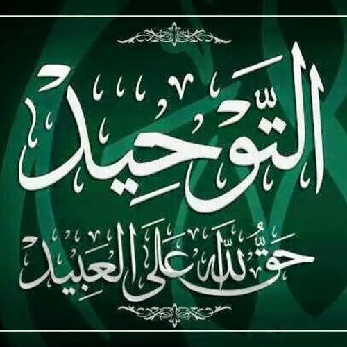 Abu Haleemah Ibn Jumu'ah's avatar