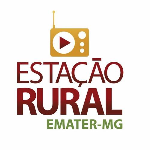 Estação Rural Emater-MG's avatar