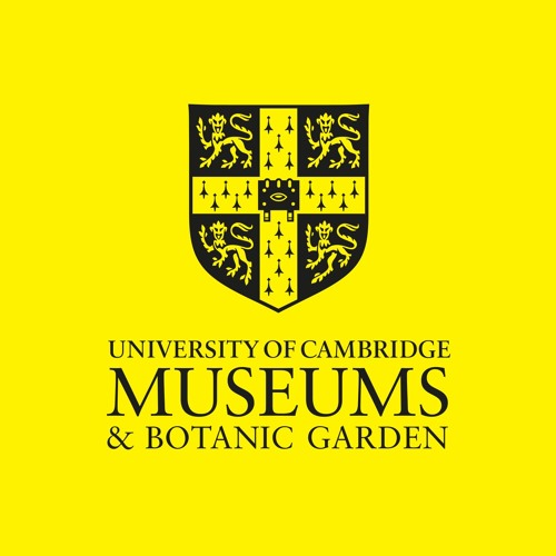 University of Cambridge Museums's avatar