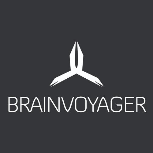 Brainvoyager's avatar