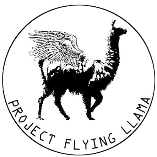 温泉芸術サークルFlying Llama's avatar
