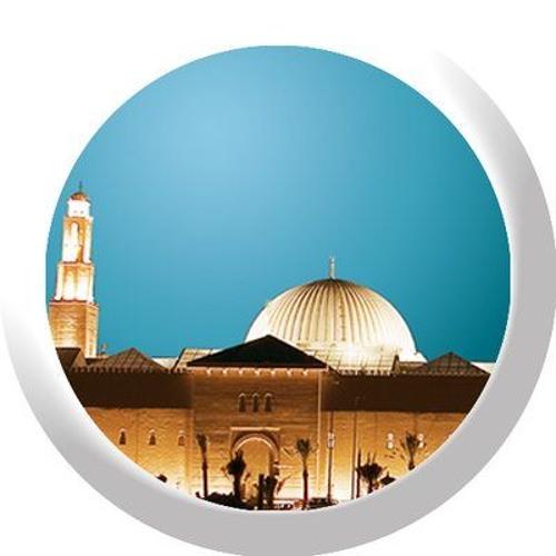 شرح كتاب ذيل صحيح ابن خزيمة - الاثنين  المغرب 25 - 5-1441هـ