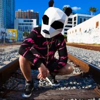 Pink Panda Remixes