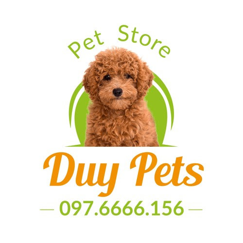 duypets's avatar