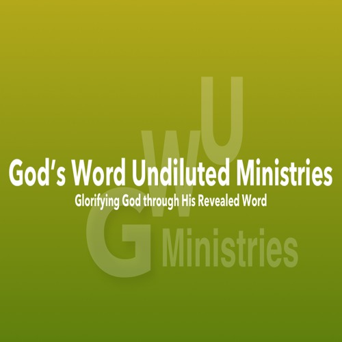 God's Word Undiluted Ministries's avatar