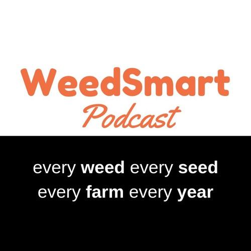 WeedSmart's avatar