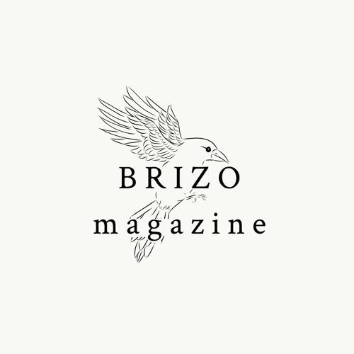 BRIZO Magazine's avatar