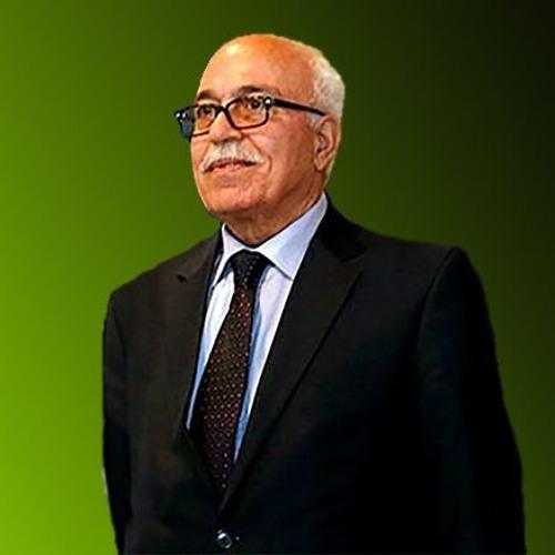 Saleh Rafat's avatar