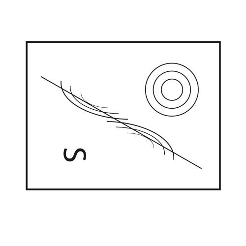 Schalen's avatar