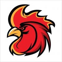 Judi Sabung Ayam Online Bonus 8x Win By Agen Judi Ikan 168