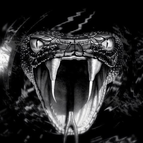 BOOM$LANG's avatar